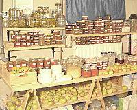 tomatenkonzentrat selber machen